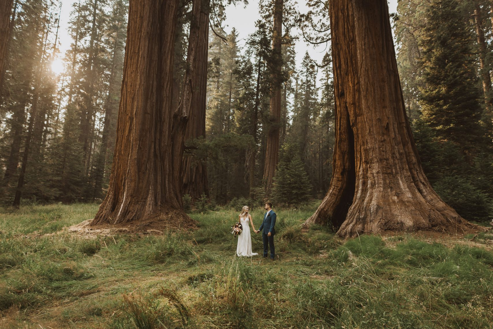 sequoia national park elopement